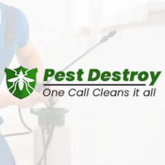 Pest Destroy