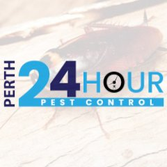 24 Hour Pest Control Perth
